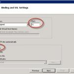 Asistente de creación de sitio FTP en IIS 7.5.
