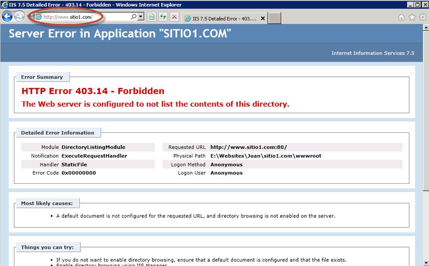 Prueba de sitio web en IIS luego de haber borrado archivos de publicación por FTP.