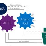 Ilustración 1 – Opciones de Identidades de Office 365.