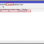 Ilustración 18 – Configuración de EndPoint On-Premise. Configuración de Mikrotik: Parámetros IPSec.